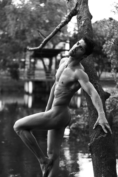 men tree nature nude